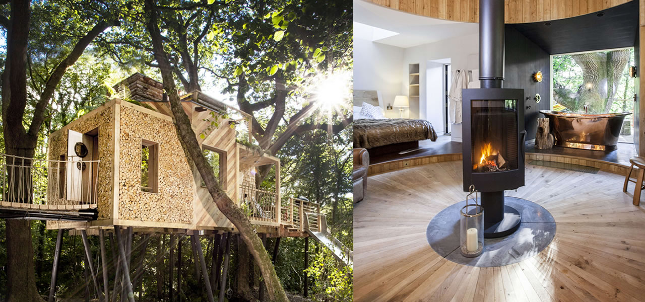 inspiring treehouse scape in dorset