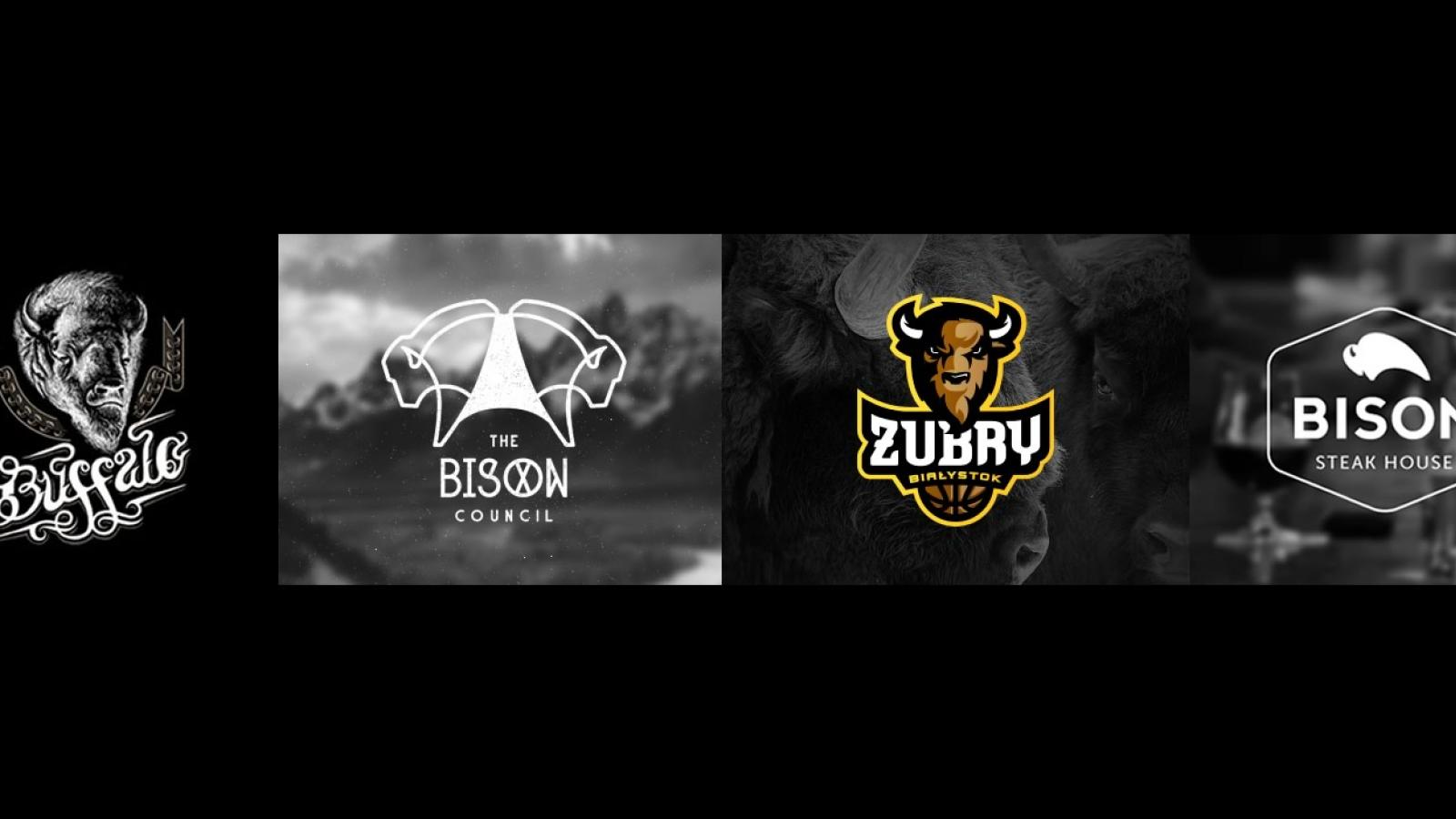 Logo Design: Buffalos and Bisons