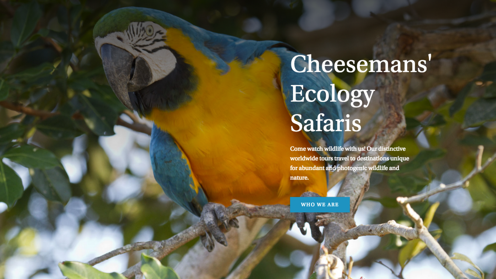UI/UX Cheesemans' Ecology Safaris