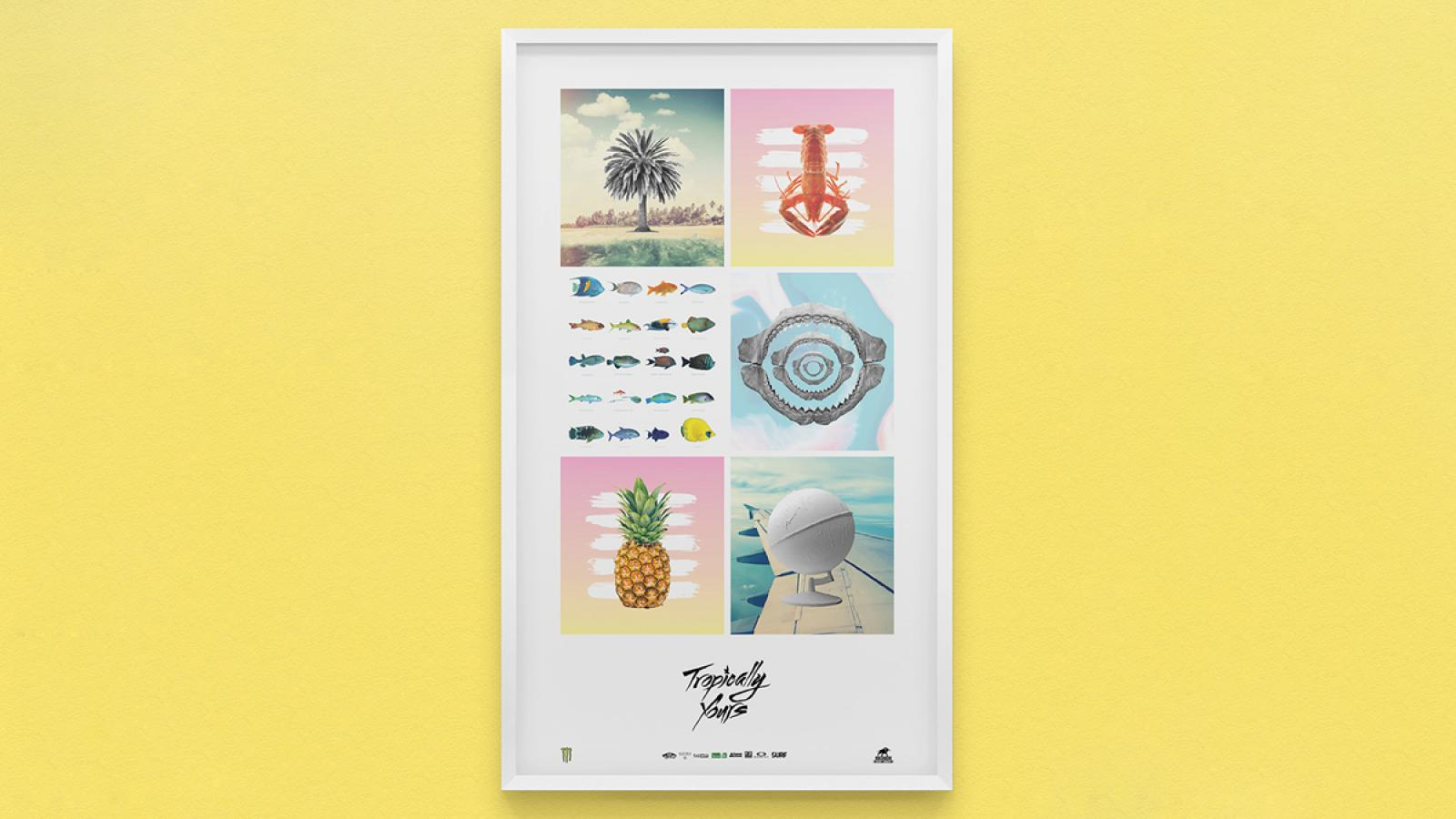 Tropically Yours Identity by Wedge & Lever