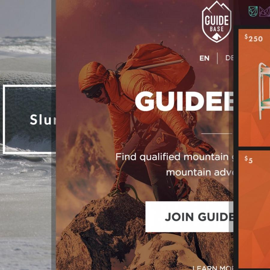 Sites of the Week: Exposure Theme Winners from ThemeFuse