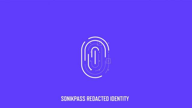 Sonikpass Awesome Brand Identity and Web Design