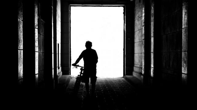 Splendid Silhouette Photography