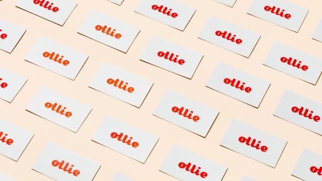 Ollie branding