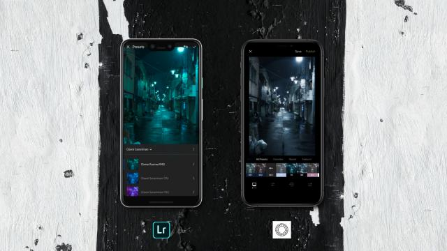 Lightroom CC v VSCO: a photo editing app comparison