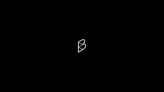 Branding: Beste Birer