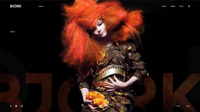 Minimalist Web Design Concept for Bjork