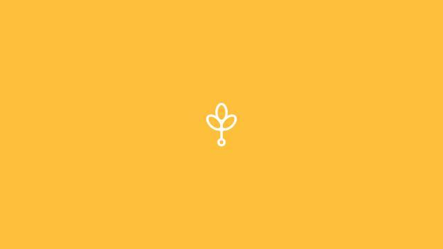 Branch Creative Visual Identity