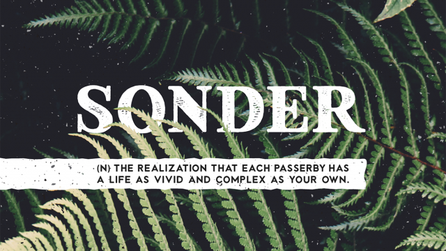 Sonder Font - Free Family