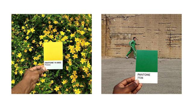 """Pantone Project"" Photo Series"